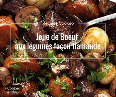 Joue De Boeuf Aux Legumes Facon Flamande Recette Cookeo
