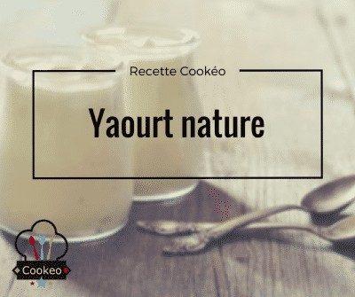 Yaourt nature